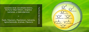 Levulinic Acid and other biobased chemicals via on..