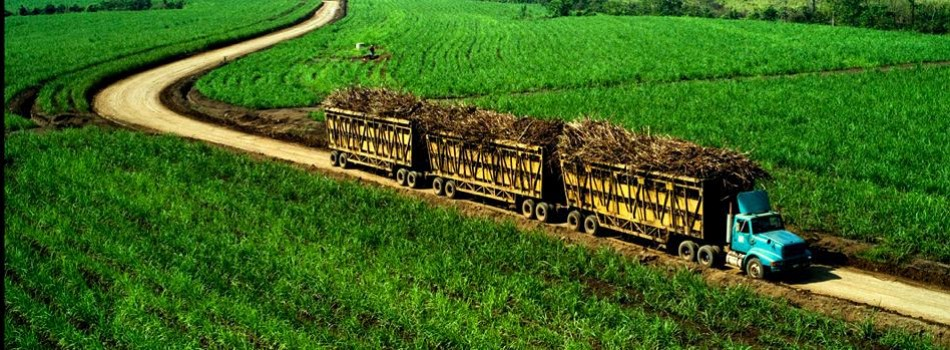Sugarcane Transport (Brazil)